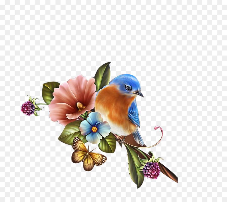Flower Illustration clipart.