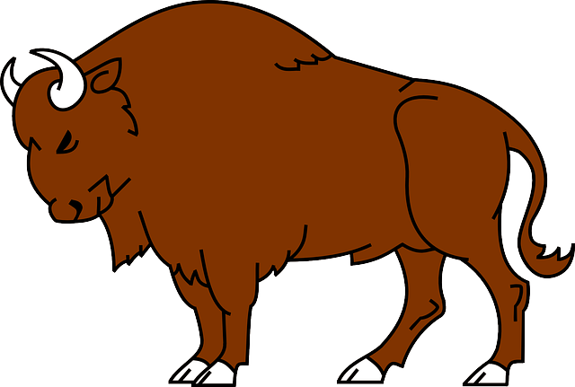 American bison Clip art.