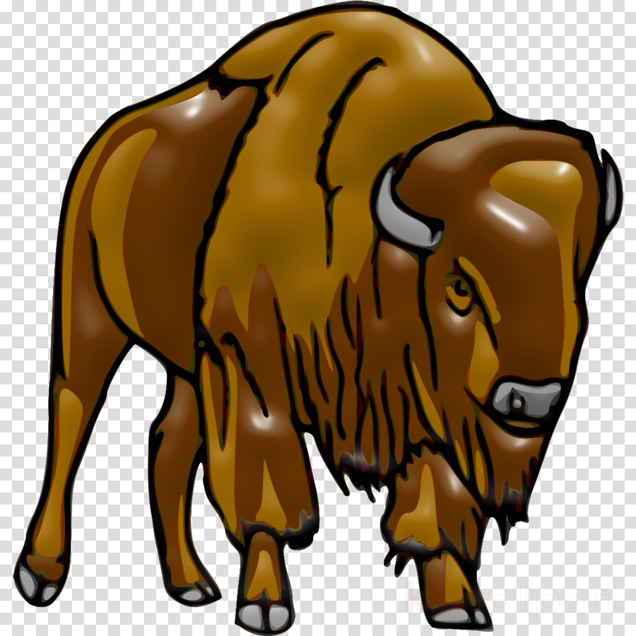 bison clip art bovine animal figure terrestrial animal.