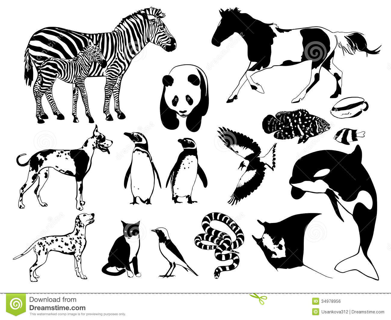 Black and white animals stock vector. Illustration of flying.