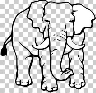 White Elephant Clipart PNG Images, White Elephant Clipart Clipart.