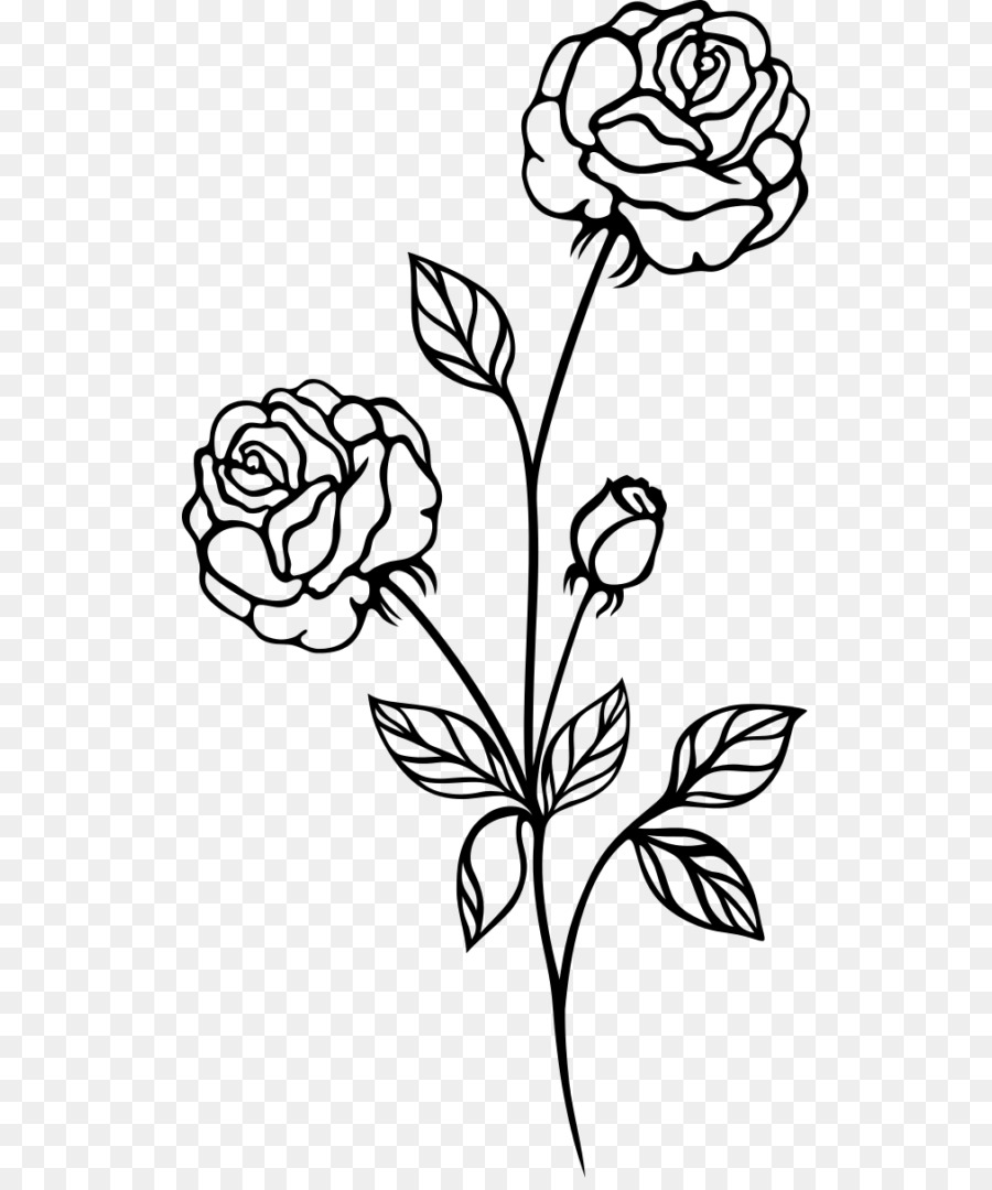 Black And White Flower.