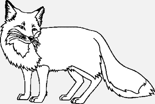 Fox Black And White Clipart & Free Clip Art Images #13646.