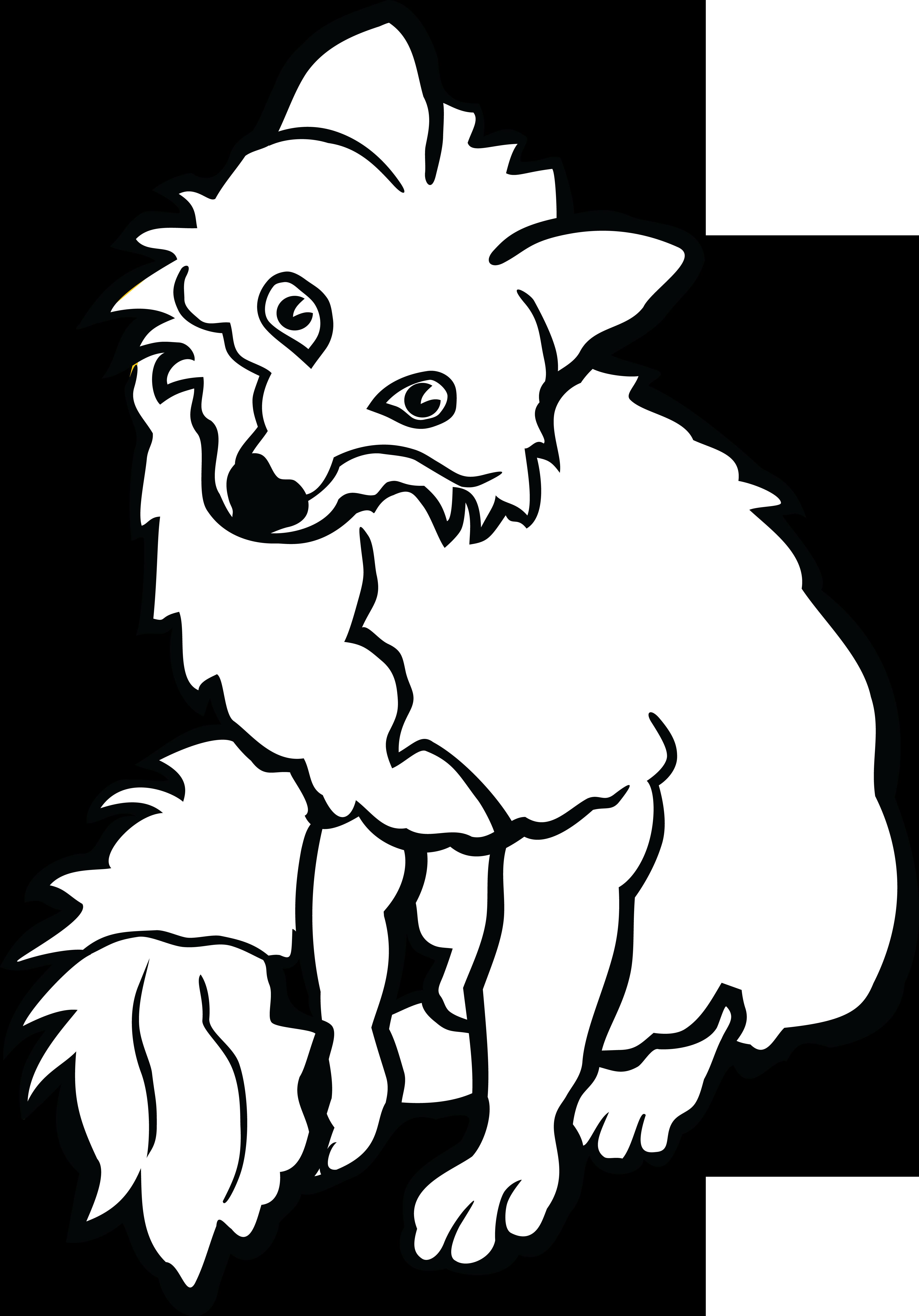 White Fox Drawing.