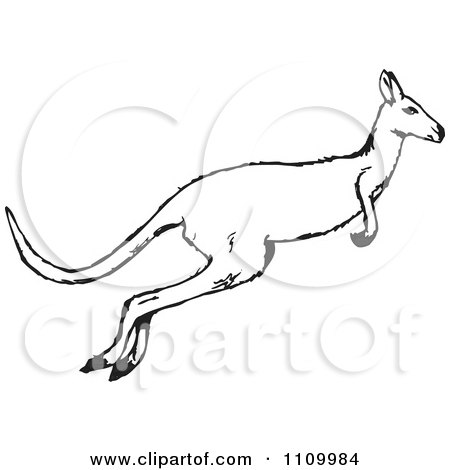 Clipart Black And White Jumping Kangaroo.