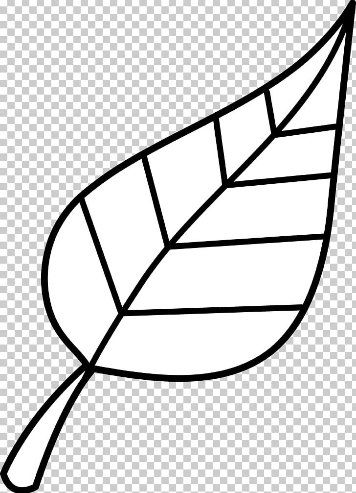 Look At Leaves Black And White Leaf PNG, Clipart, Angle.