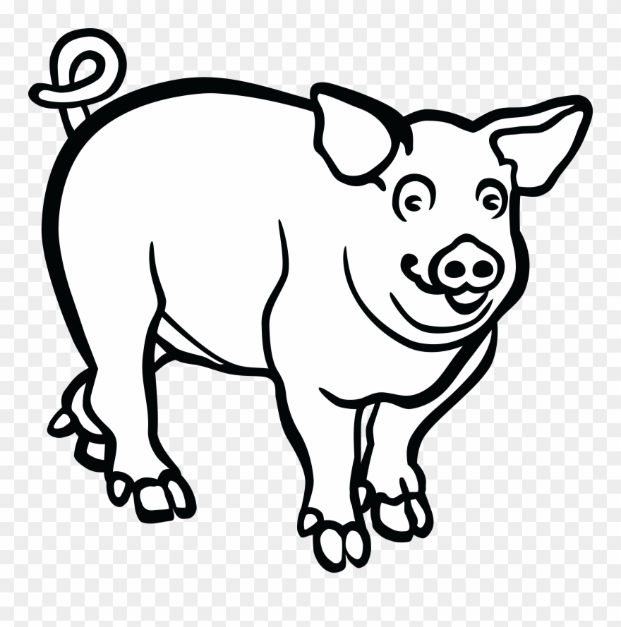 Wild Boar Line Art Drawing Black And White.