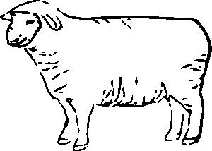 Sheep black and white sheep lamb clipart black and white free.