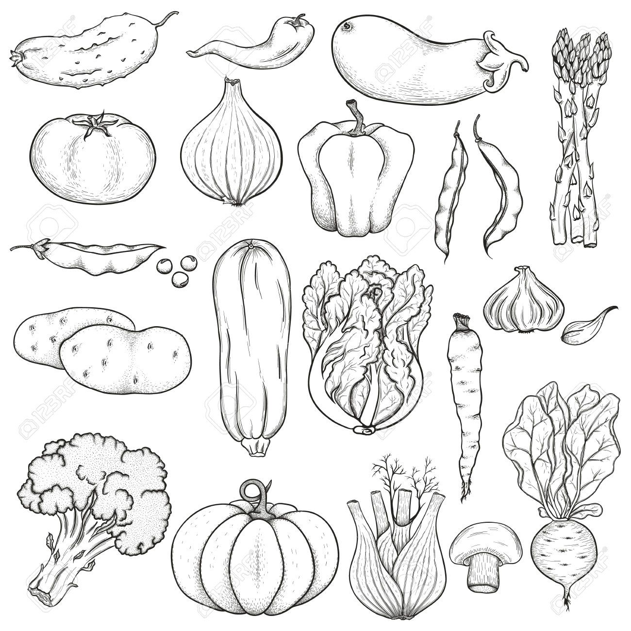 clipart vegetables black and white.