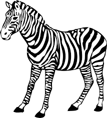 Image result for zoo animals clipart black and white.
