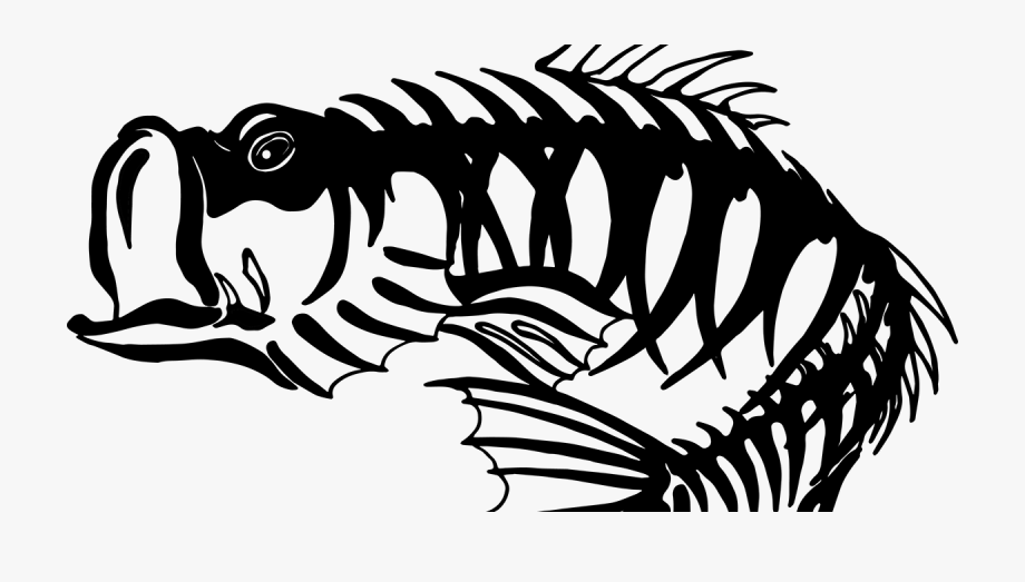 Smallmouth Bass Free Clipart.