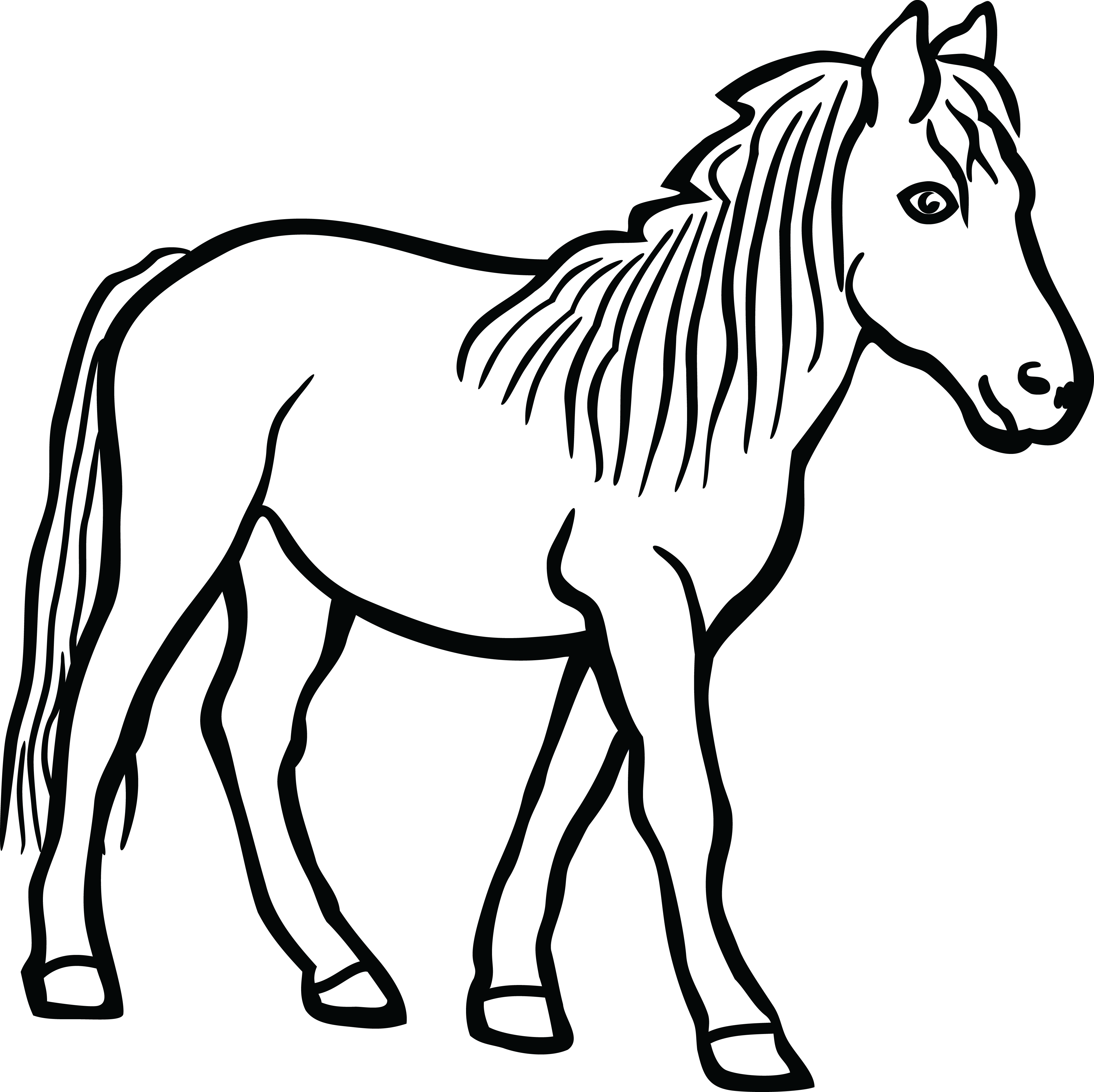 Free Clipart Of A Horse. White Black Hor #72531.