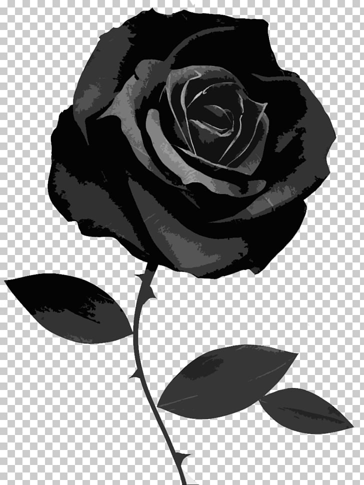 Black rose Desktop Symbol, black rose, black rose.