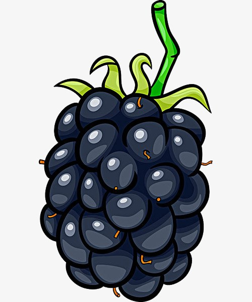Clipart blackberry 4 » Clipart Portal.