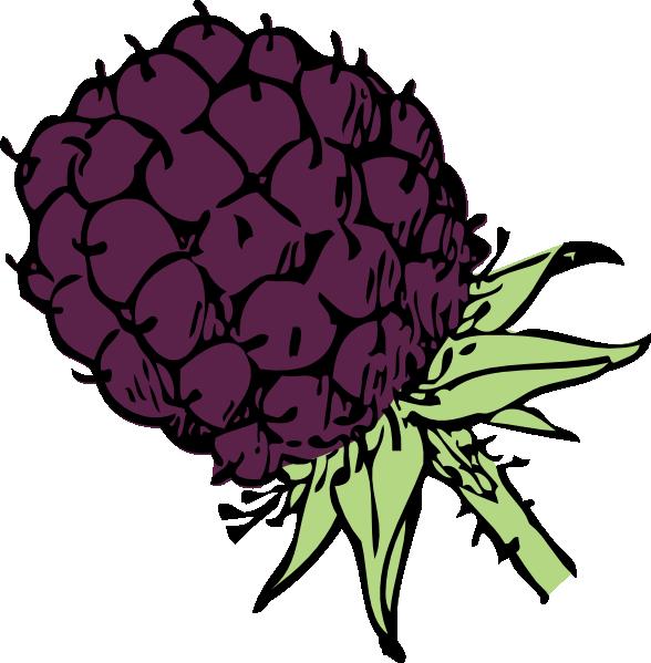 Showing post & media for Cartoon fruit blackberry.