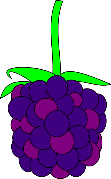 Blackberry cartoon clipart.