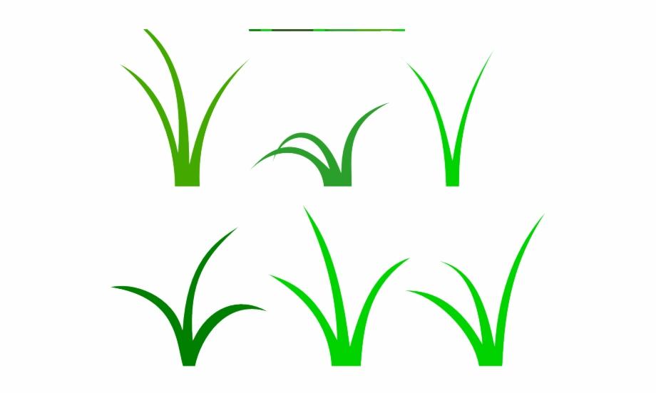Lawn Clipart Blade Grass.