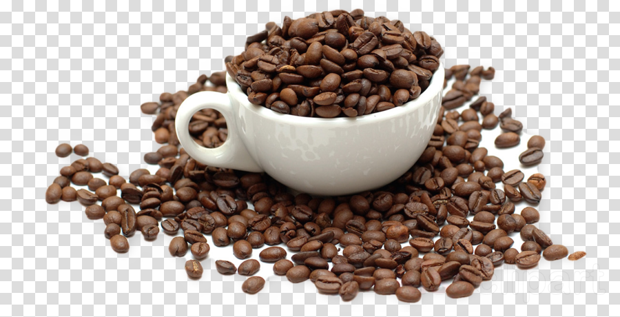 caffeine jamaican blue mountain coffee kapeng barako java.