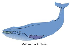Blue whale Illustrations and Stock Art. 2,766 Blue whale.