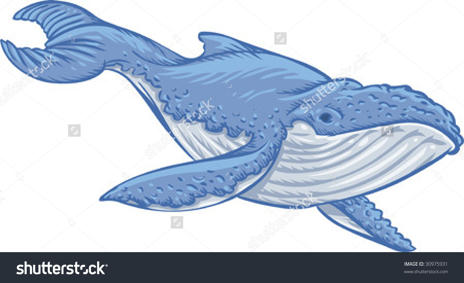 Vector Clip Art Illustration Blue Whale Stock Vector 30975931.
