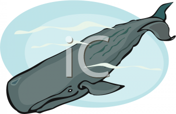 Animal Clip Art Picture of a Blue Whale.