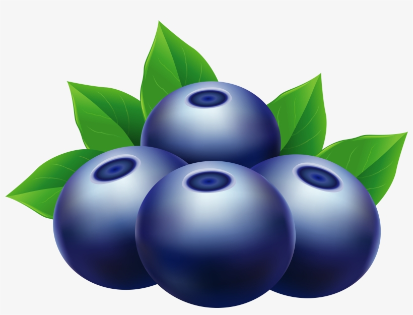 Clipart Blueberries.