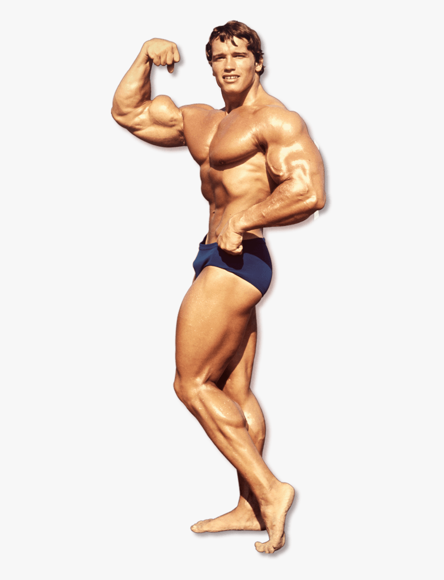 Transparent Bodybuilders Clipart.