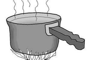 Clipart of boiling water 2 » Clipart Portal.