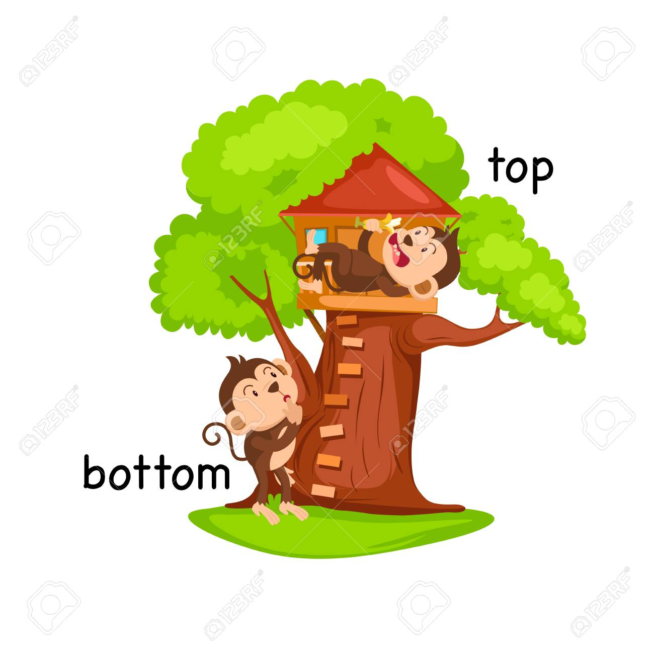 Opposite words bottom and top vector illustration.