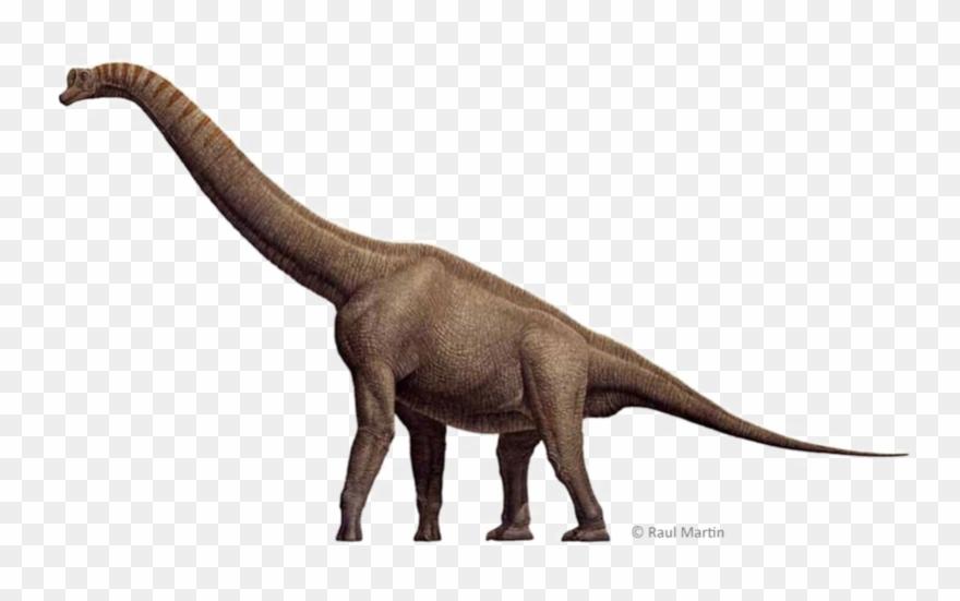 Brachiosaurus Download Free Transparent Image Hd Clipart.