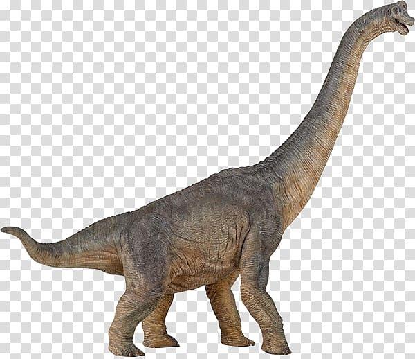 Brachiosaurus Apatosaurus Dinosaur Amargasaurus Baryonyx.