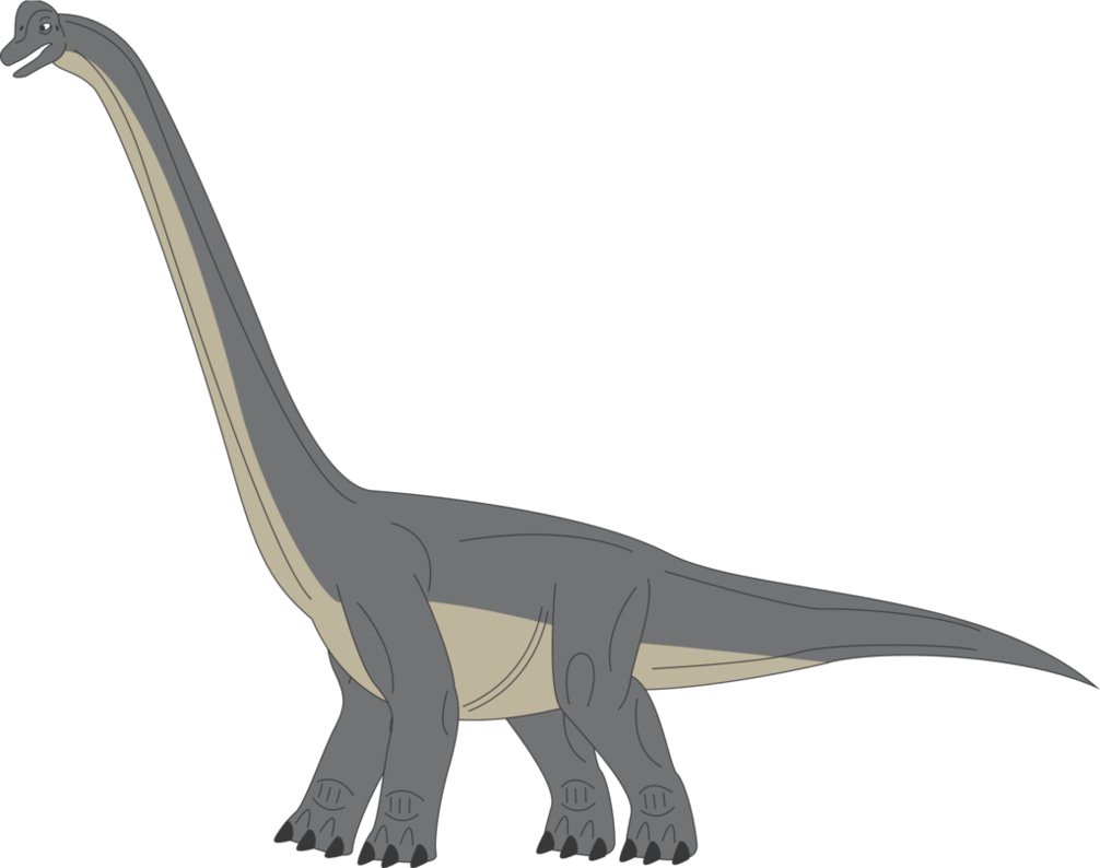 Download Brachiosaurus Picture Free Clipart HD HQ PNG Image.
