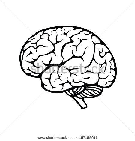 Brain Vector Free.