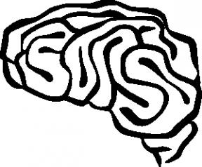 Brain Clipart Transparent.
