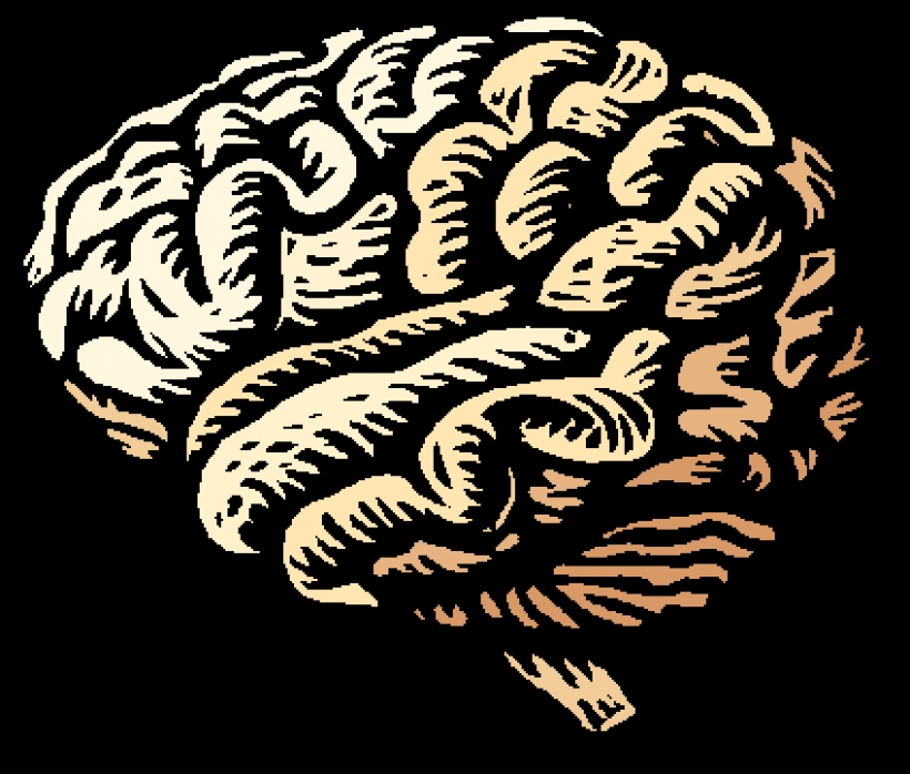 clipart brain transparent clipart brain transparent free brain.