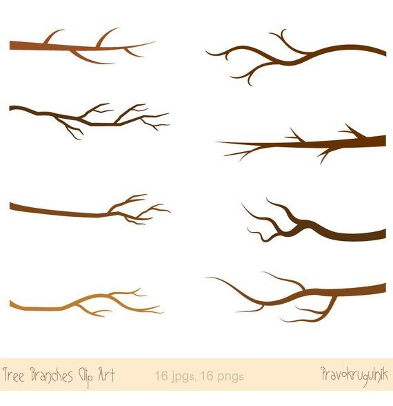 Fall branches clipart, Autumn branch clip art, Tree branch.