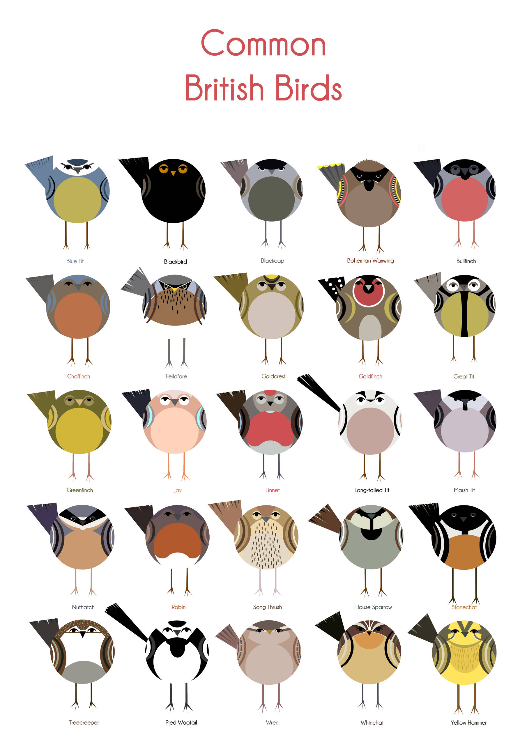 Common British Birds.