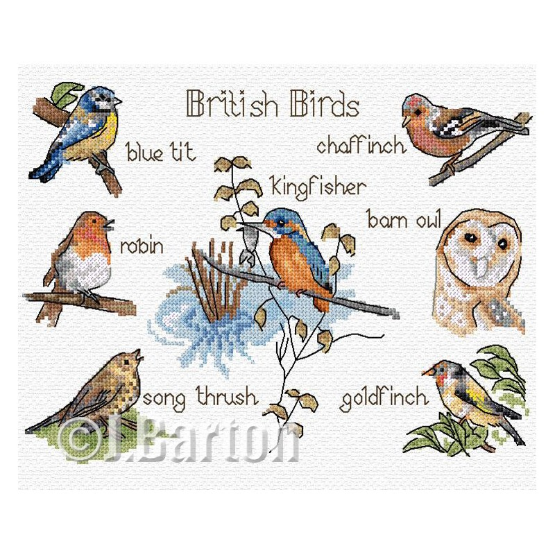 British birds.