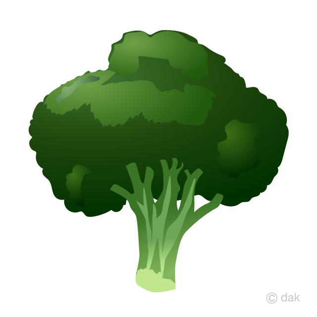 Free Broccoli Clipart Image|Illustoon.