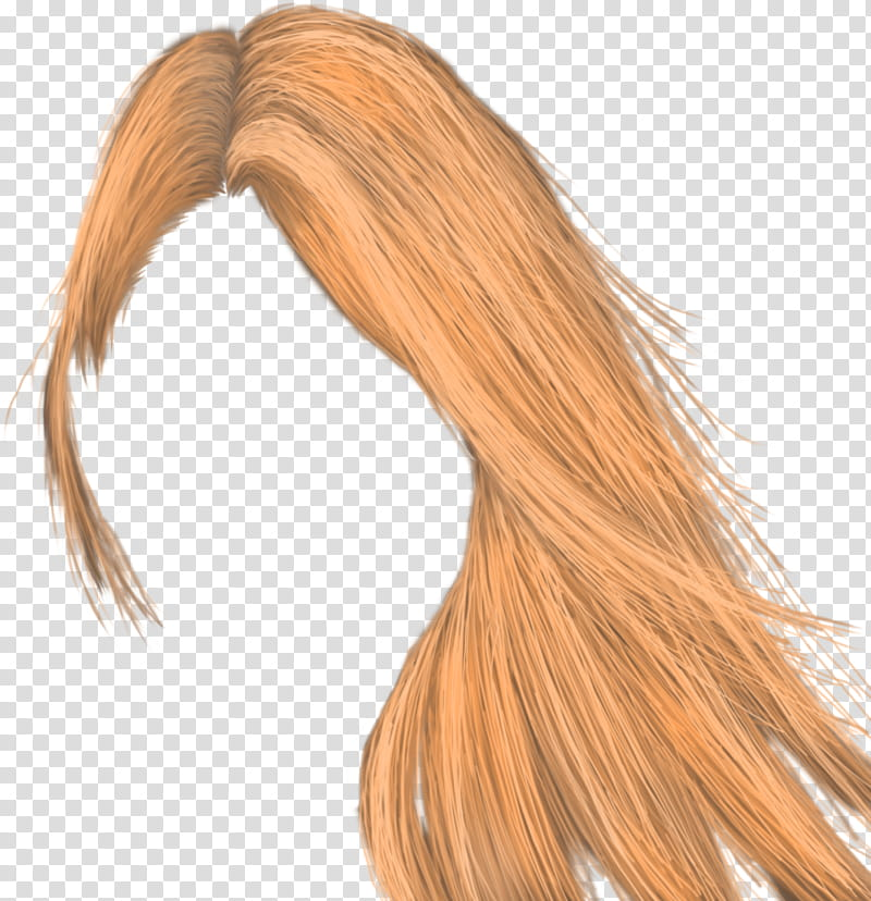 Hair , brown hair illustration transparent background PNG.