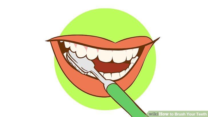 Brush teeth brush my clipart.