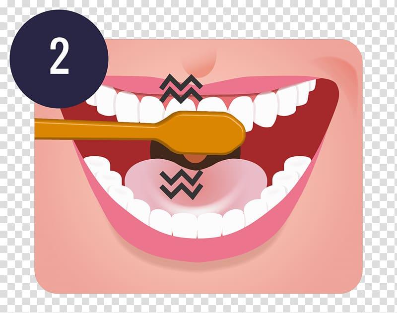 Tooth brushing Teeth cleaning Dentistry Oral hygiene, teeth.