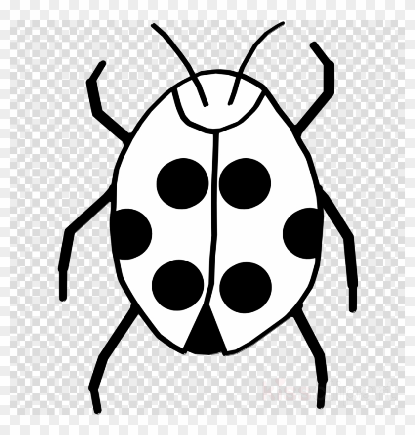 Download Of Bug Black And White Clipart Beetle Clip.