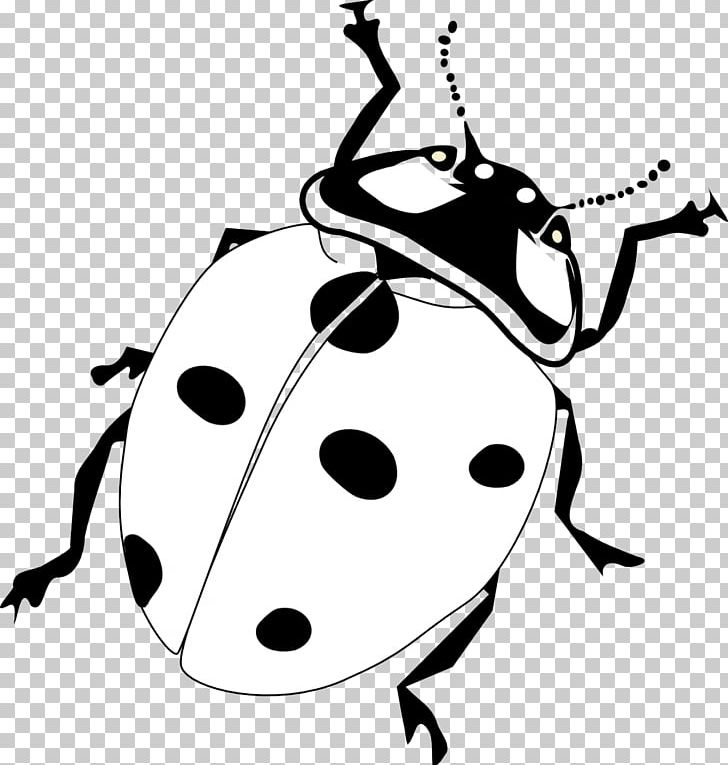 Drawing Line Art Black And White PNG, Clipart, Artwork, Beetle.