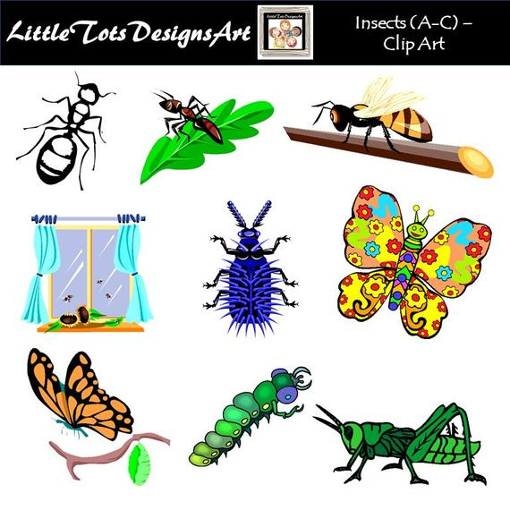 Bugs Clip Art Clipart, Insects Clip Art Clipart, Digital Clipart, PNG  Images, Personal or Commercial Use, Instant Download.