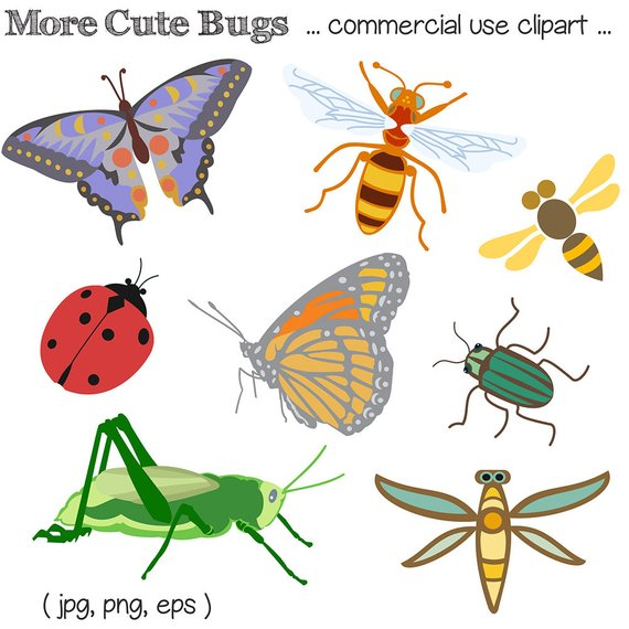 Bug Clipart, Bug Clip Art, Insect Clipart, Insect Clip Art, Insects.