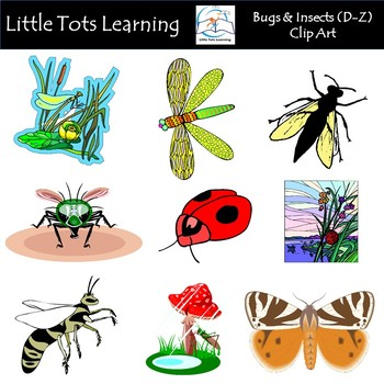 Bugs & Insects Clip Art (D.
