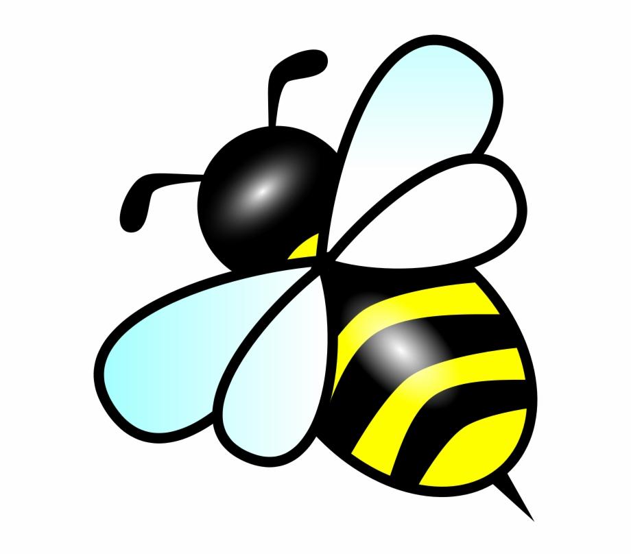 Bee Vector Png.