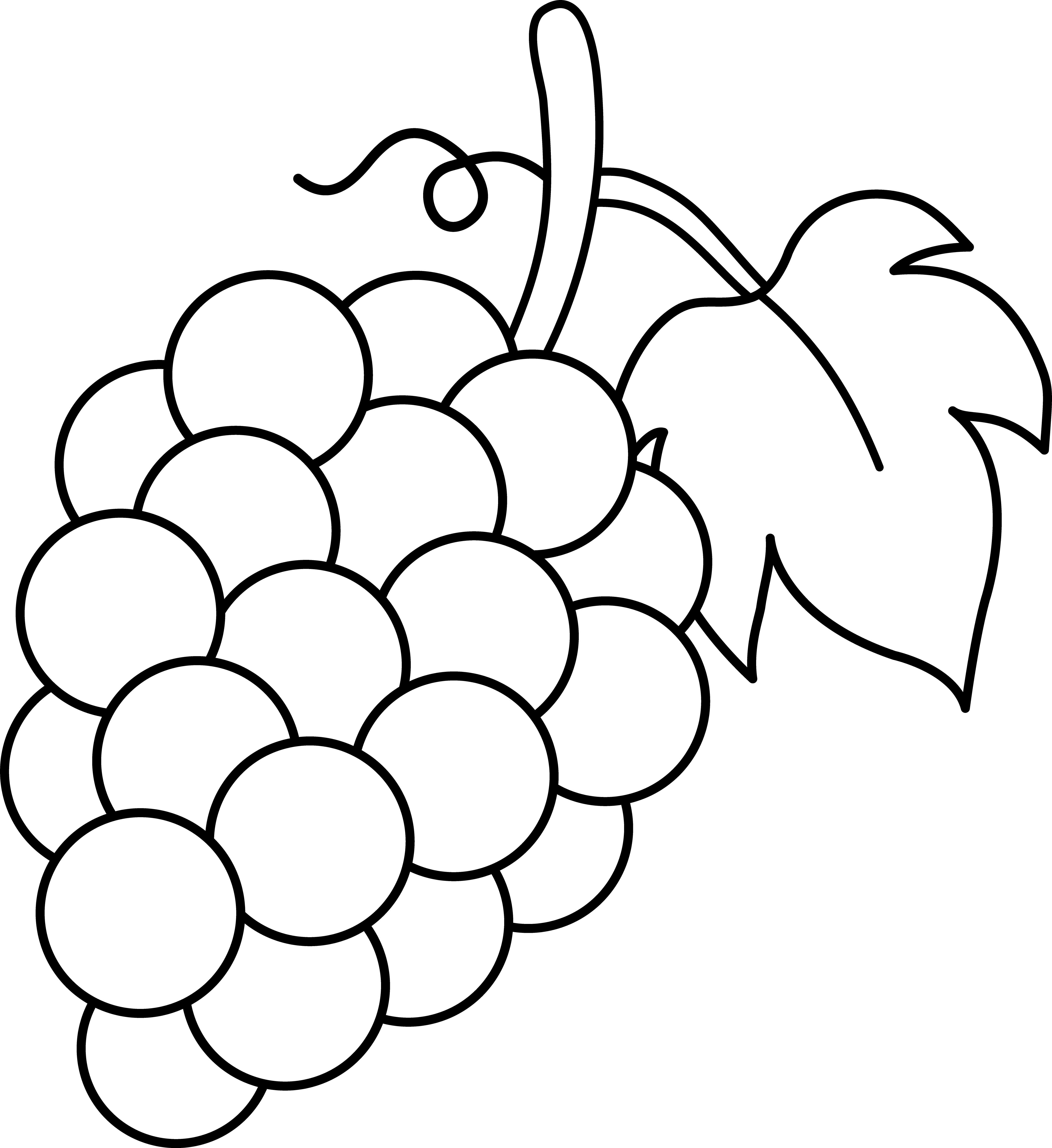 Line Art of a Bunch of Grapes.