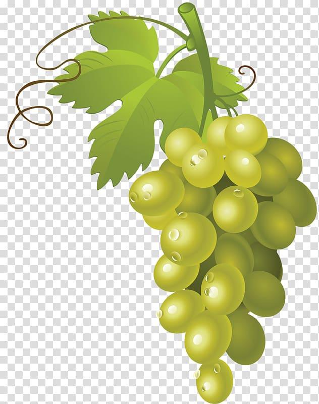 Green grapes , Common Grape Vine Wine , a bunch of grapes.